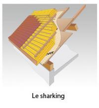 le sharking