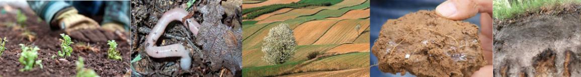 Biodiversiteé des sols